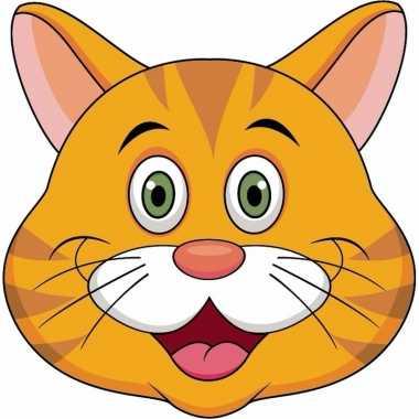 Kartonnen oranje katten/poezen dieren masker voor kinderen