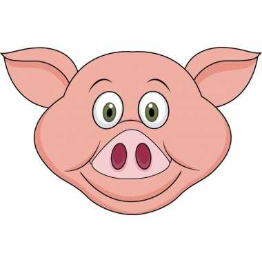 Kartonnen varken dieren masker voor kinderen