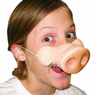 Varkens neus dieren masker